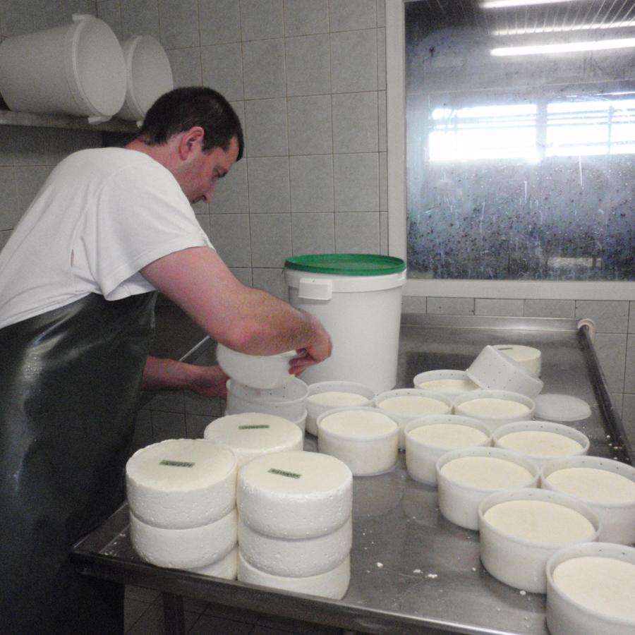 visite à la ferme fabrication fromage terre2savoie